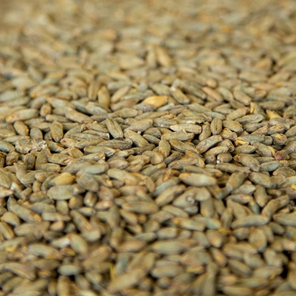 Picture of Gambrinus Rye Malt